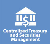 Centralized Treasury and Securities Management Division
