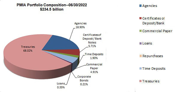 Pie chart showing PMIA portfolio composition